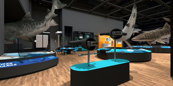 Touring Exhibition: Sharks render 44