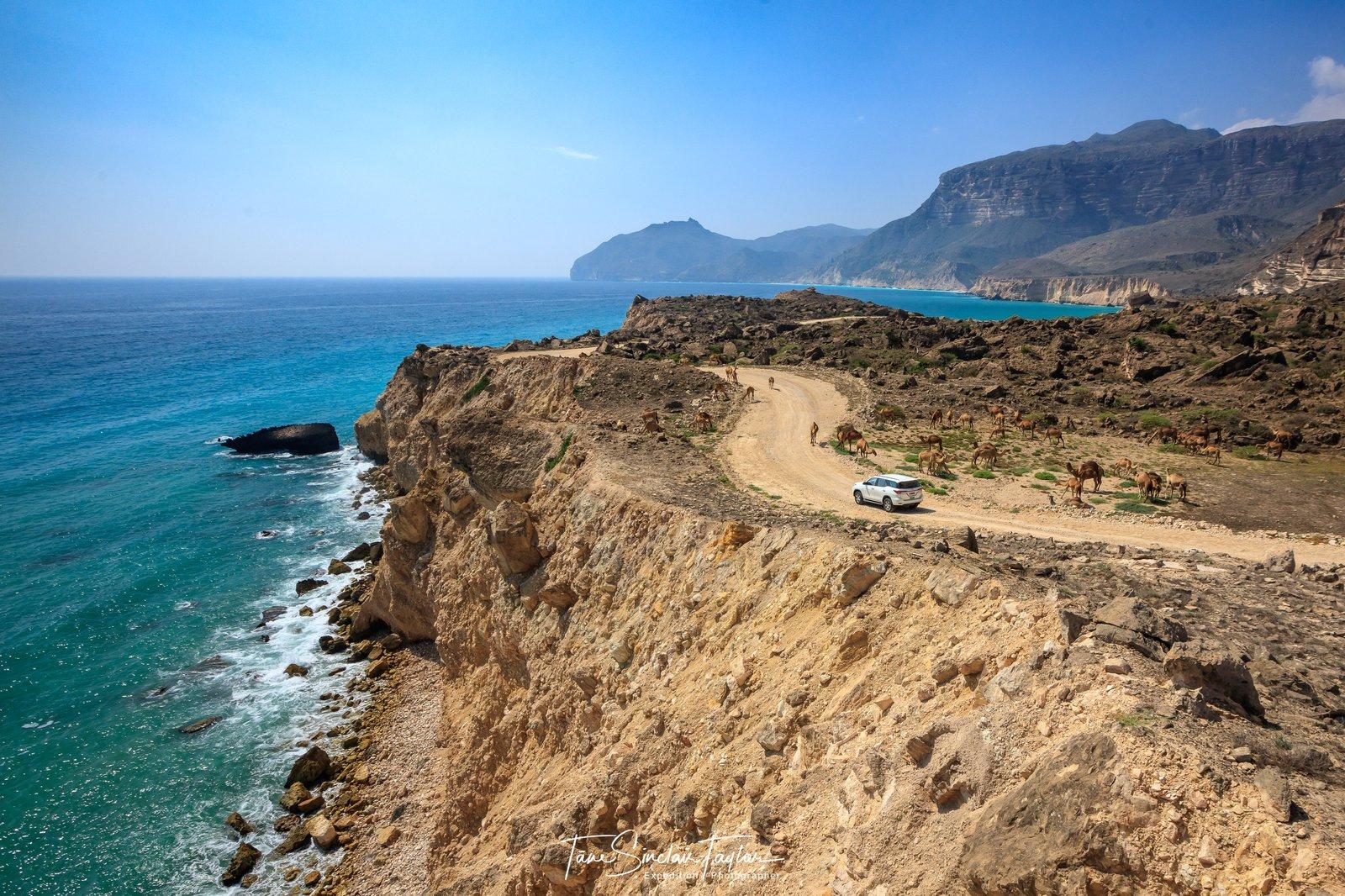 Sampling site near Southern Dhofar region of Oman
