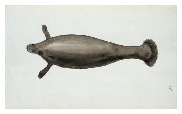 Sarah Stone Watercolour Sea Manatee