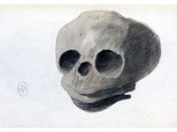 Sarah Stone Watercolour Skull