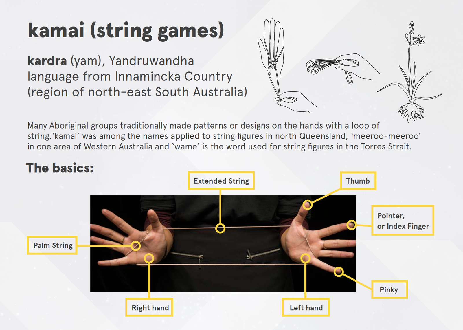 kardra (yam) string figure instructions