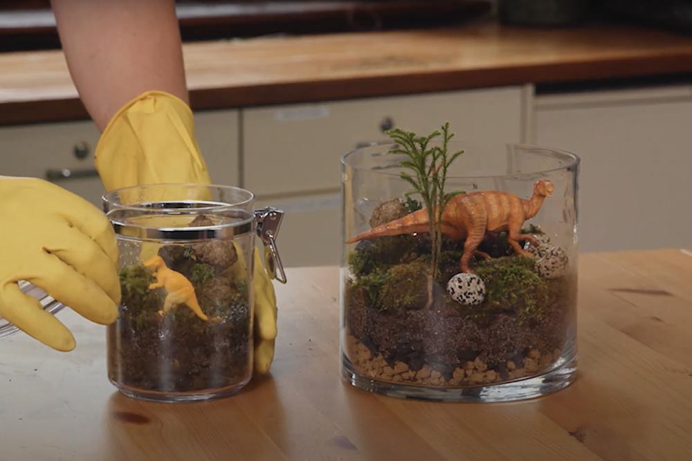 How to make a Jurassic terrarium