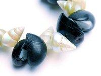 Shell necklace E094522