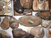 Stone tools, Somalia.