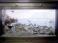 Lord Howe Island Diorama