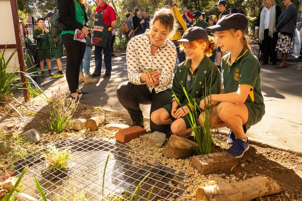 Frog Pond launch with Bunnings