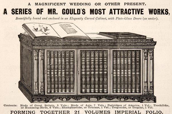 Set of Gould folios