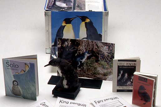 Museum in a Box - Penguins