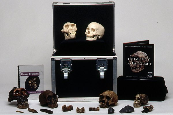 Museum in a Box - Human Evolution