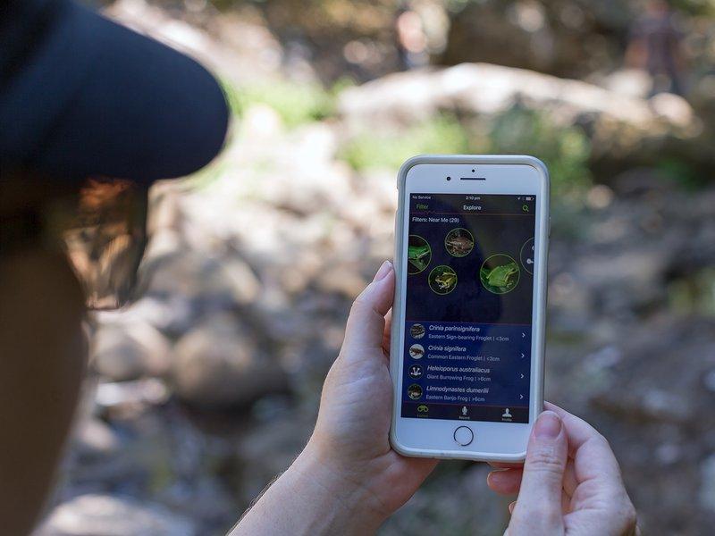FROG ID app in the field