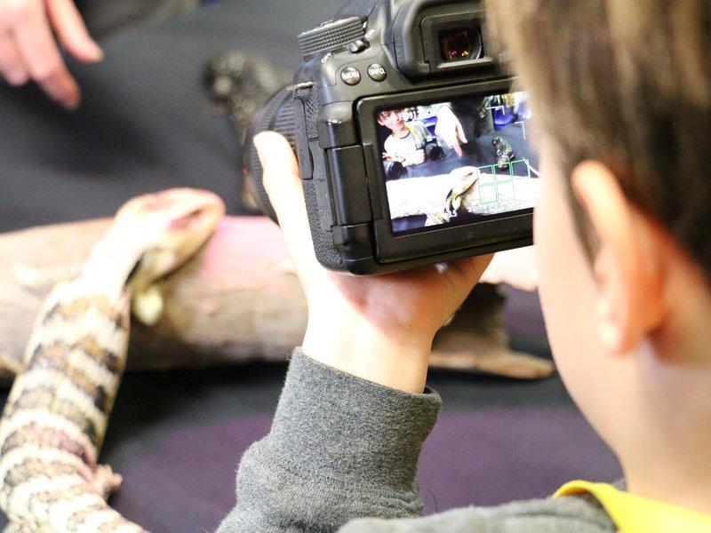 Wildlife photography workshops for kids