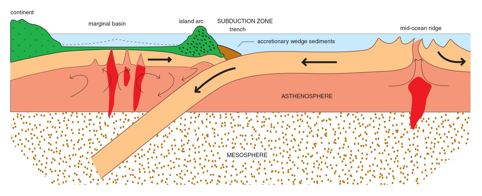 Cross-section through tectonic plates