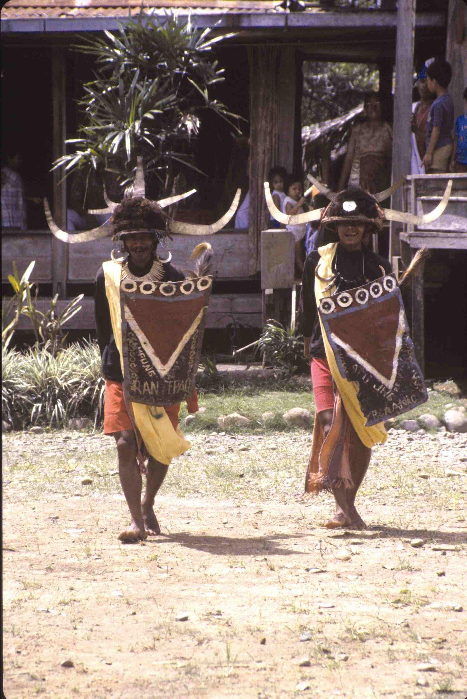 Toraja dancers perform a warrior dance