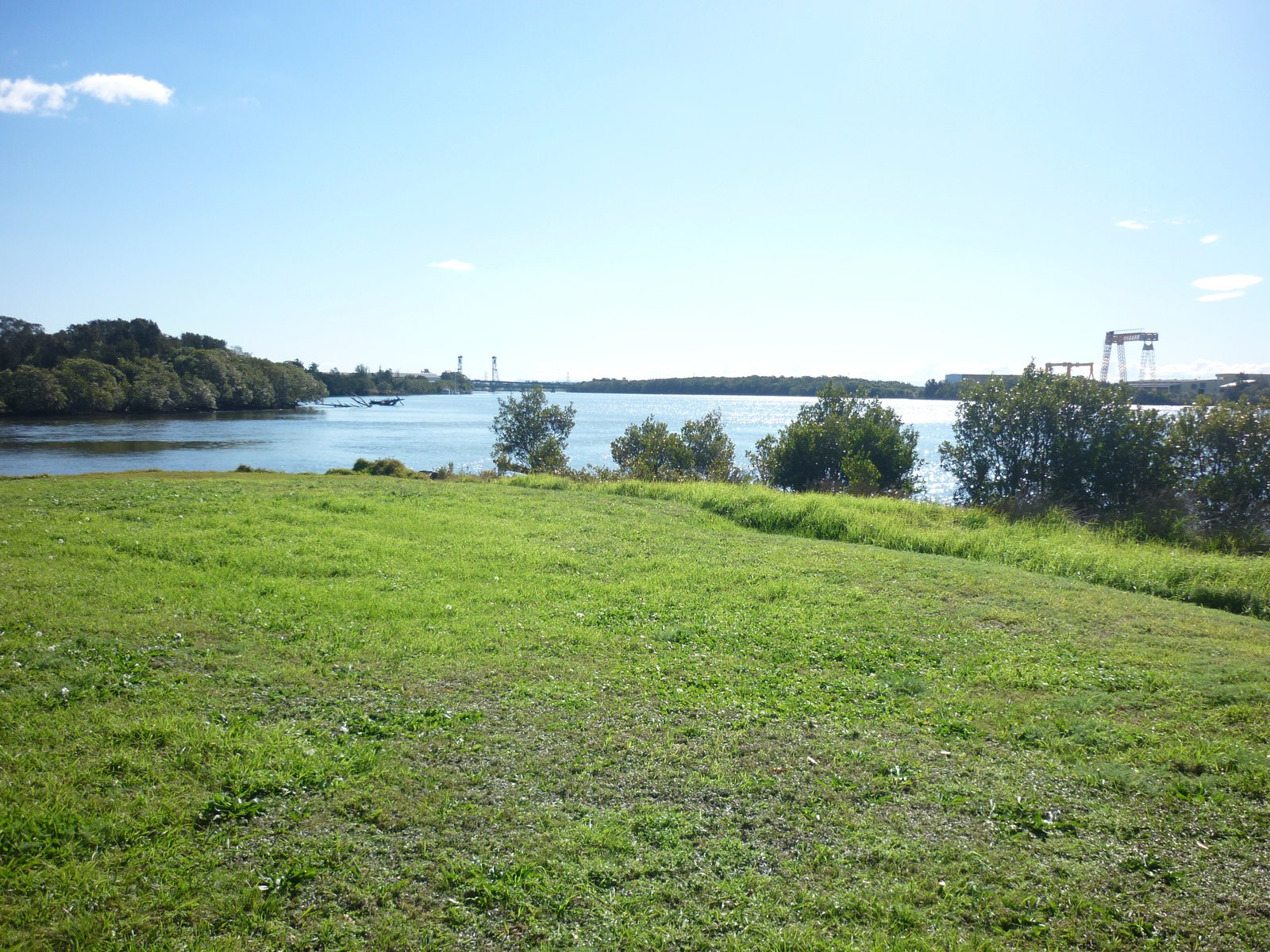 Scotts Point Ash Island, view upriver