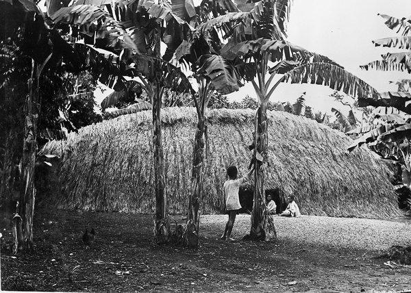 House, Port Vila, Vanuatu