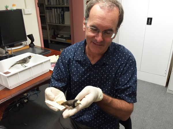 Dr Richard Major