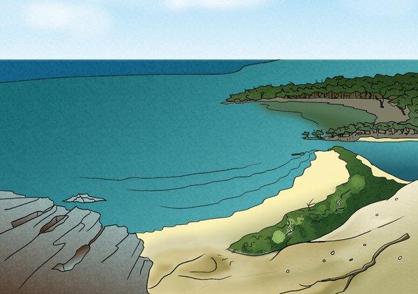 Coastline Habitat