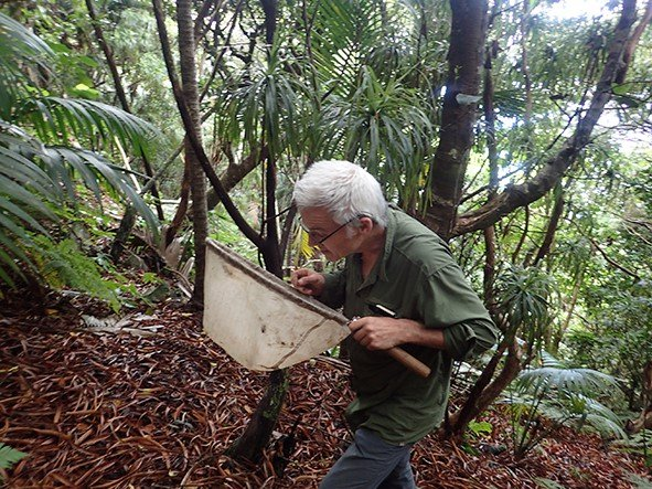 Chris Reid -  Field work on Lord Howe Island