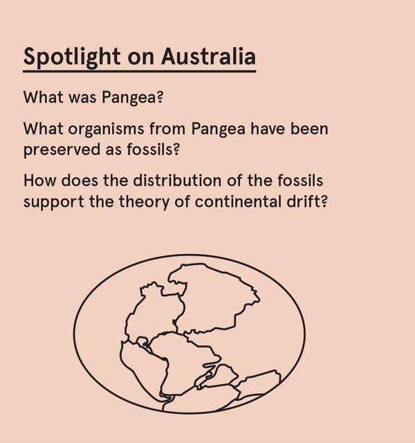ED_Dino_S - Pangea