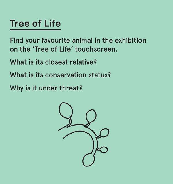 ED_WP_S - Tree of life