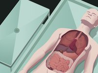 Virtual Autopsy banner