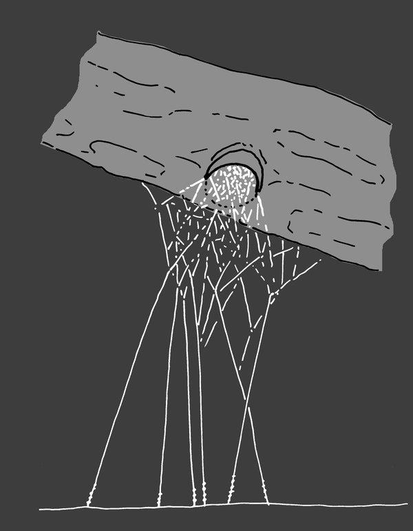 W31- tangle web