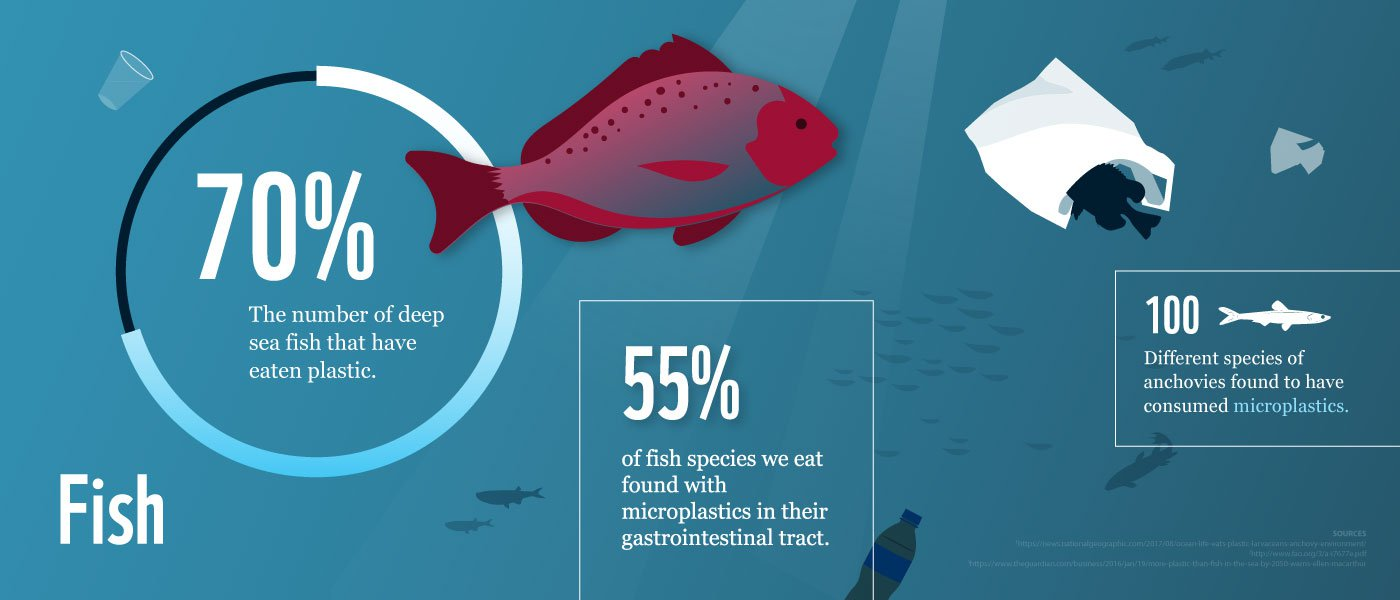 70% of deep sea fish have eaten plastic