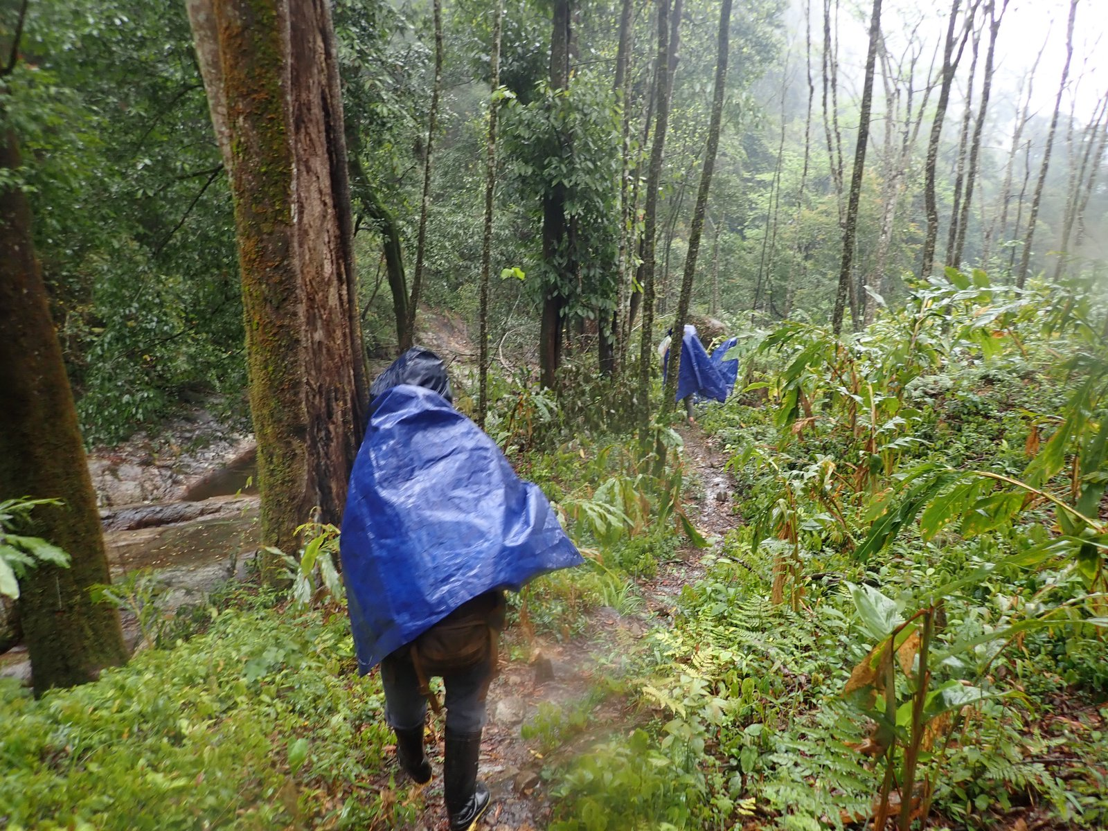Wet weather in Lai Chau Province, northern Vietnam