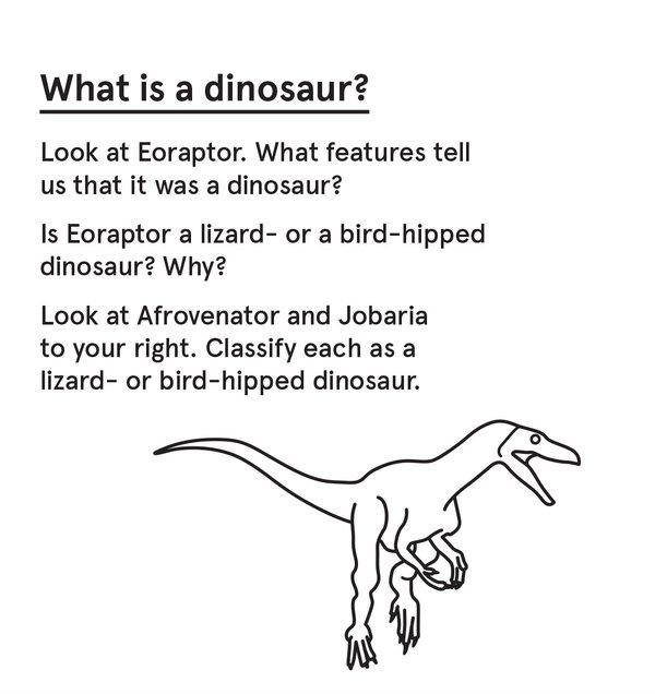 ED_Dino_S - Eoraptor