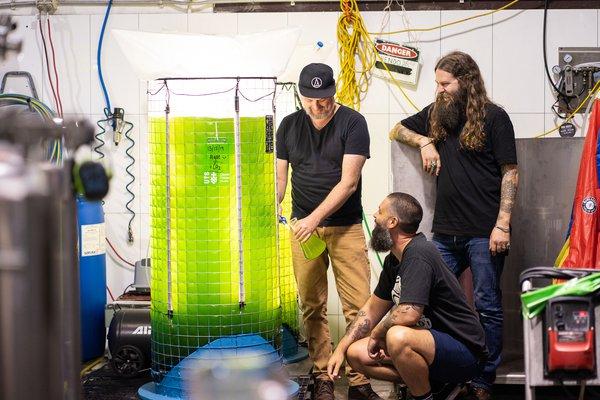 Young Henrys Brewery algae bioreactor