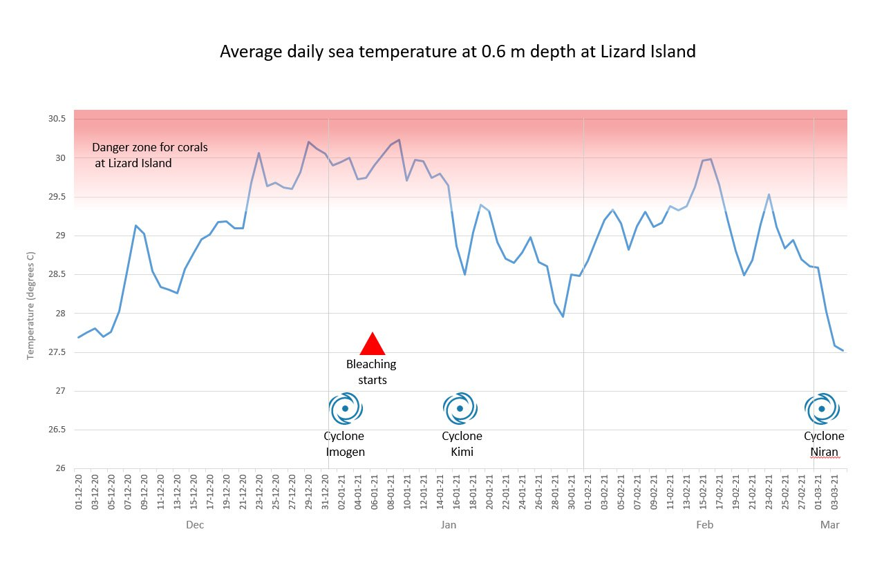 Average daily sea temperature at 0.6m depth at Lizard Island.
