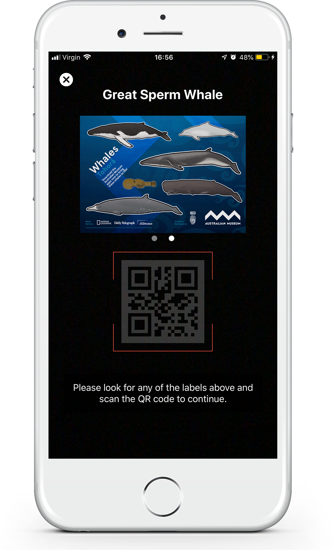 Sticker augmented reality whale screen of the Whale Trail game