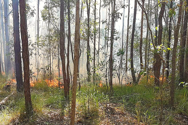 Cultural Fire is used in unison with the landscape