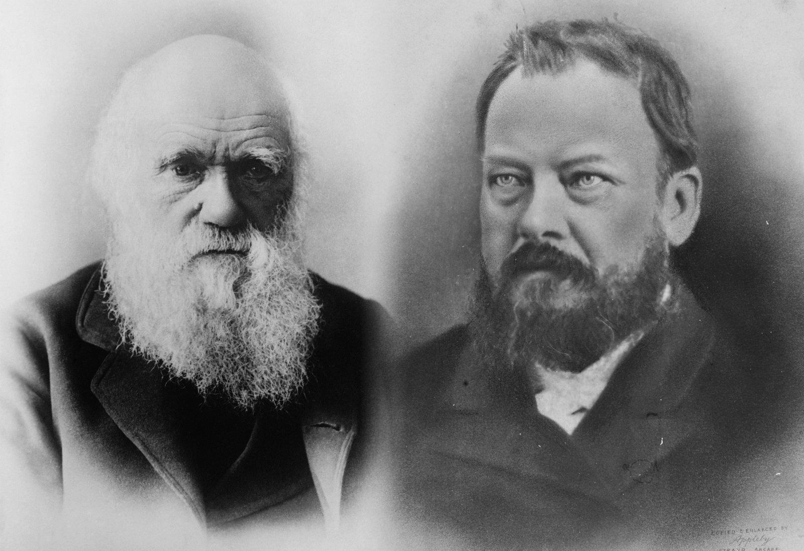 Charles Darwin and Gerard Krefft