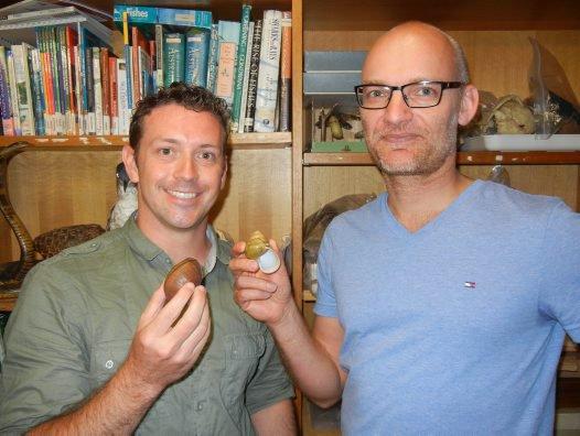 Conservation of Australian Snails