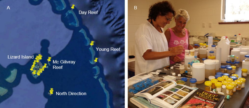 Figure 1. A. Dive sites from Google Earth; B. Daniela Pica and Penny Berents studying stylasterids in the lab at Lizard Island Research Station