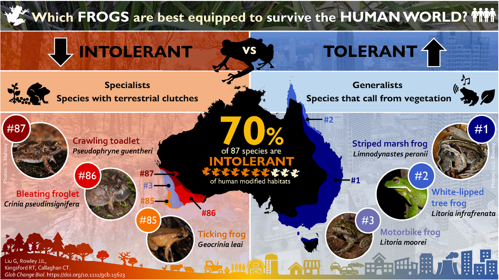 Some of Australia's most and least tolerant fogs. [Source: Gracie Liu. Copyright: Gracie Liu].