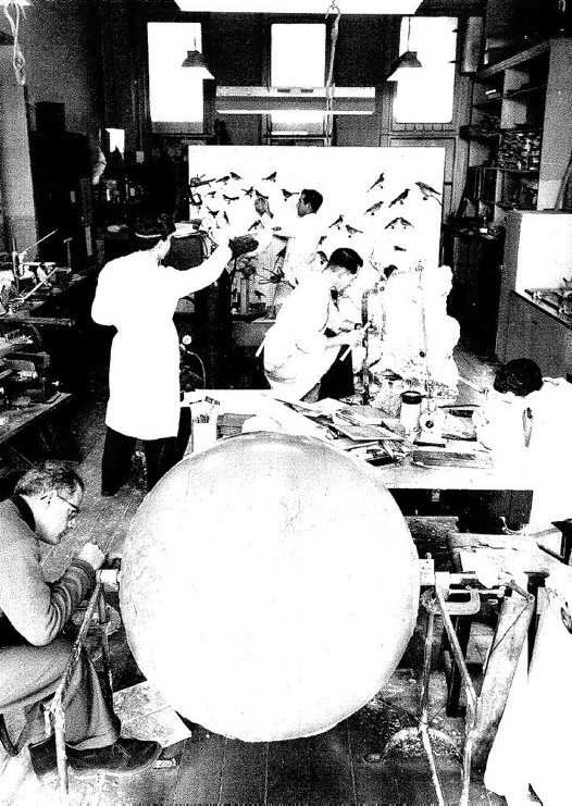 Australian Museum Globe in the Archives