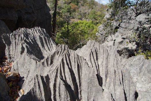 Madagascar 2012 - Grey Limestone Tsingy