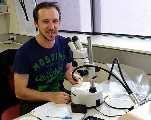 Dr Michael Hammer