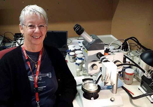 Dr Helen Larson