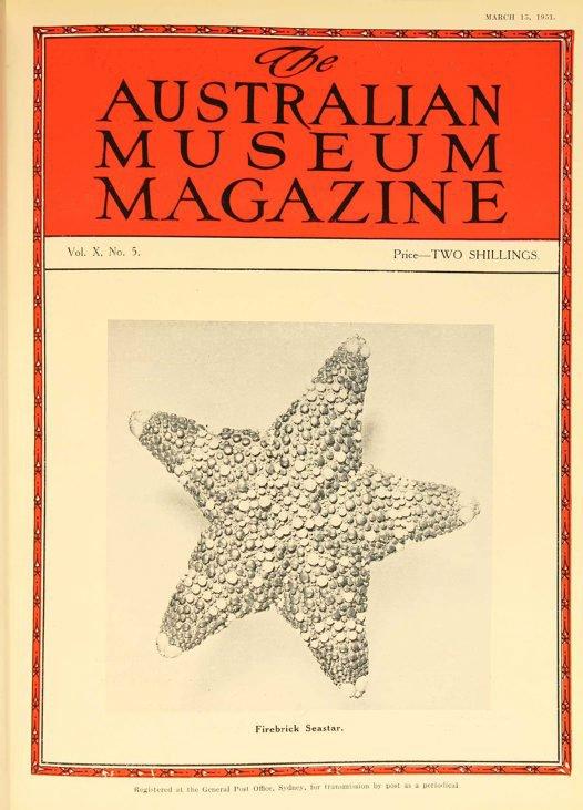 Australian Museum Magazine cover, 1951