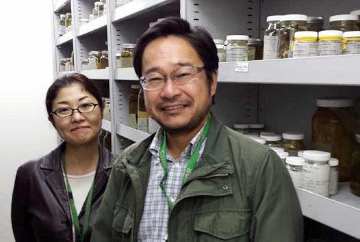 Dr Kazuo Inaba and Dr Kogiku Shiba
