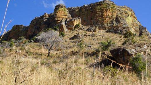 Madagascar 2012 - Isalo Parc Nationale