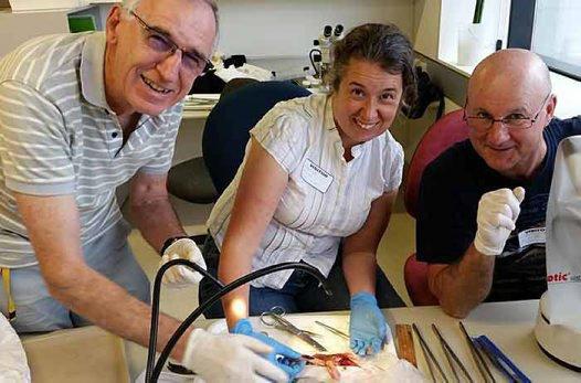 Ken Graham, Dr. Sharon Hook and Dr. Alan Williams