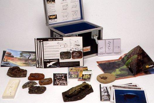 Museum in a Box - Reptiles