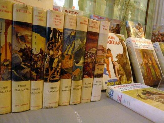 Adventure novels