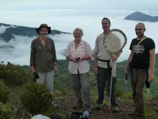 Timor-Leste Terrestrial Expedition #38