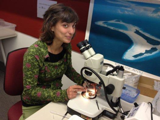 Visiting scientist Patricia Alvarez - Working
