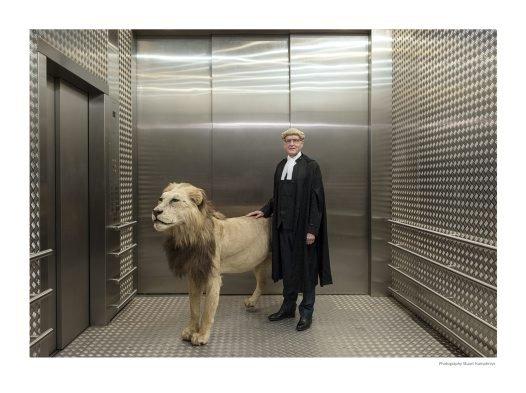 The Macquarie Street Lion